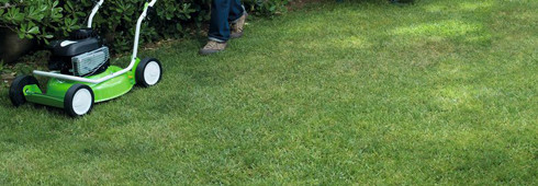 The green and easy way to mow a lawn